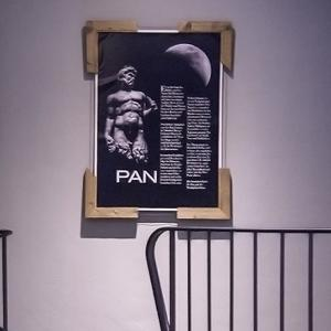 Pansauna